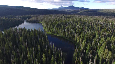 "flight over the lake ""Iconsi"" in the Siberian taiga Footage"