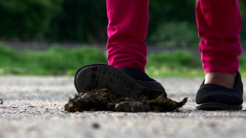 Young woman leg and foot stepping on cow dung Live Action