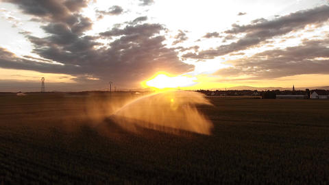 irrigation system in the field at sunset Footage