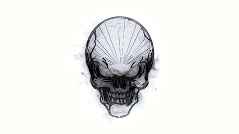 BW Burning Skull Animated Logo Loopable White Background V1 Animation