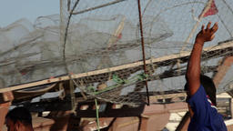 Fishermen working in Bahrain Footage