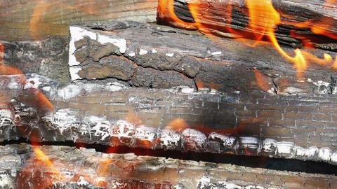 Firewood burning Live Action