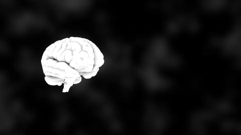 3D human white brain on black, science anatomy background, 3D rendering ビデオ