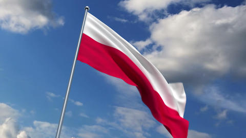 Polish flag Stock Video Footage