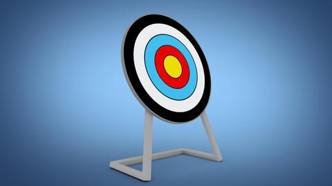 archery Stock Video Footage