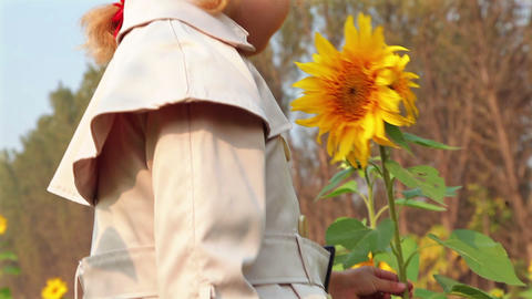 Cute child with sunflower in autumn field Footage