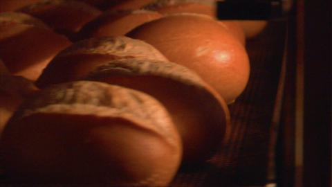 german bakery roll bun in rotary oven 10811 Stock Video Footage