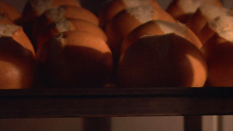 german bakery roll bun in rotary oven loopable 10821 Stock Video Footage