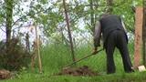 Senior Man Digging stock footage