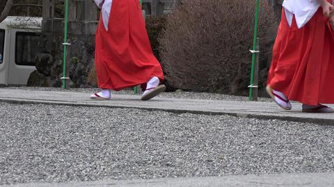 (4K)Priestess Japanese MIKO walking / 歩く巫女さん ライブ動画