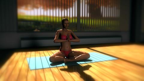 Meditation v1 Yoga Pose in Yoga studio 3D Animation Animation