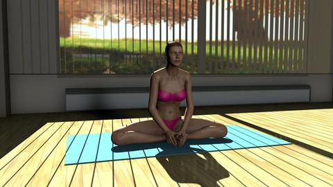 Meditation v3 Yoga Pose in Yoga studio 3D Animation Animation
