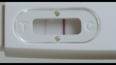 Positive pregnancy test in hands. Isolated on a white background macro shot Footage