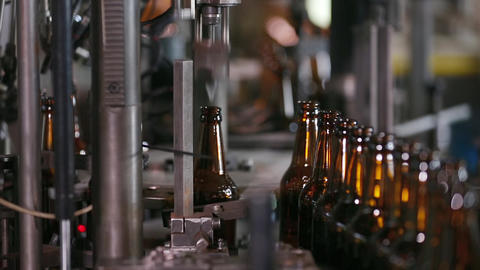 Technological line for bottling of beer in brewery Live Action