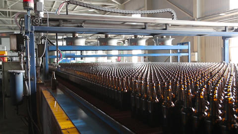 Rows of beer bottles in the factory Live Action