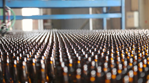 Clean bottles are moving along the conveyor Live Action