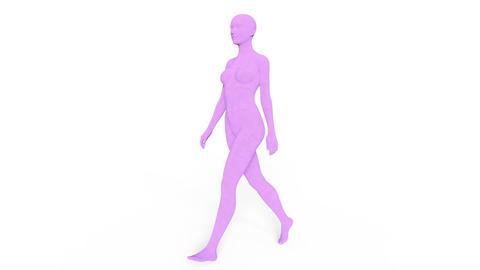 People Female Walk CG動画