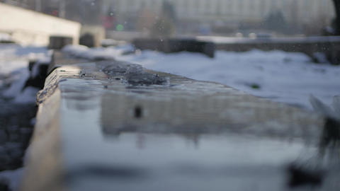 Water drops from melting snow - spring time Image