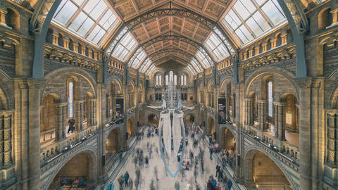 The Natural History Museum in London (time-lapse) Archivo