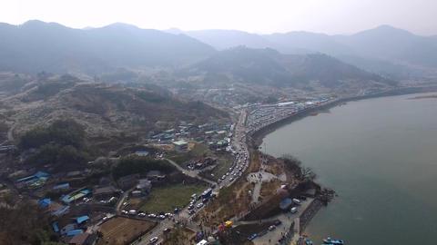 Gwangyang Plum Festival 0