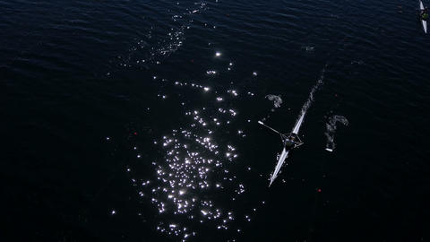 Rower Training Aerial. People paddle among islands on a lake. Sparkling blue Footage