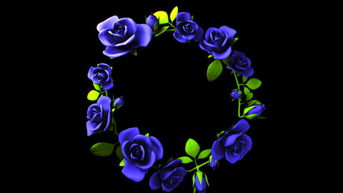 Blue roses frame on black text space CG動画
