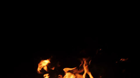Real fire isolated on black background Footage