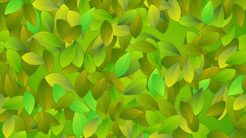 Bright summer leaves abstract video animation Animation