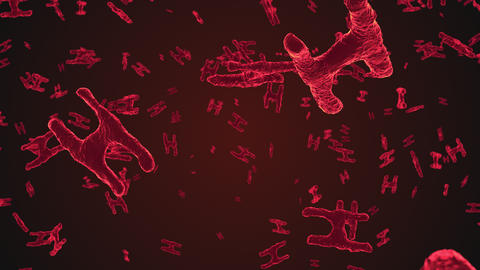 Abstract red virus cells under microscope Animation