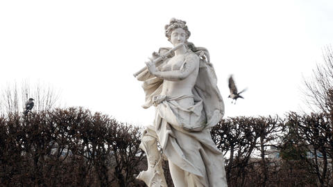 Marble statue at the Belvedere and crow flying around the statue Vienna, Austria Live Action