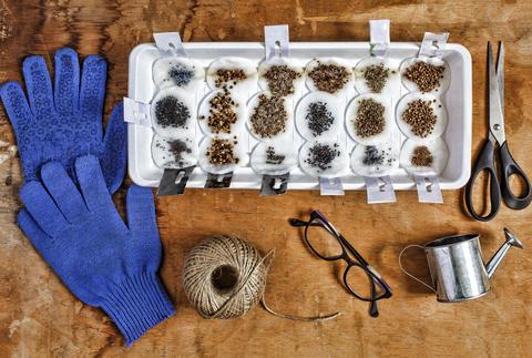 Garden, Seeds, cultivation, garden tools, plant, seed, garden, g Photo