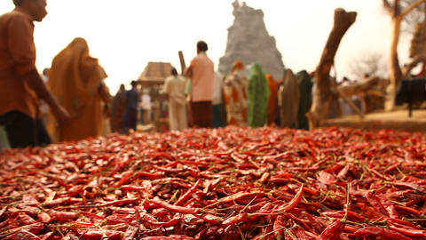Red chilies at village house Footage