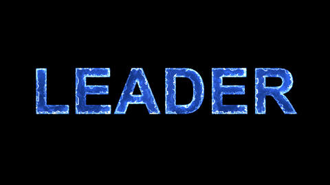 Blue lights form luminous text LEADER. Appear, then disappear. Electric style Animation