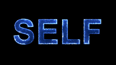 Blue lights form luminous text SELF. Appear, then disappear. Electric style Animation