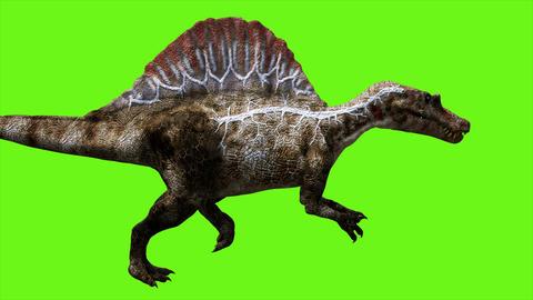Dinosaur animation on green screen. GI realistic render. 4k Animation
