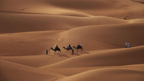 Camel caravan with tourists in sand dunes Footage