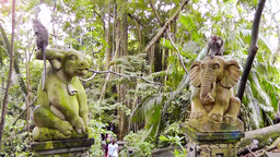 Statues of animals in Ubud Monkey Forest,Bali Filmmaterial