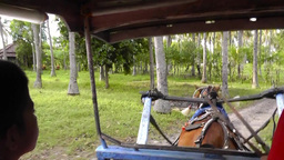 Going round Gili Air Island,Indonesia Videos de Stock