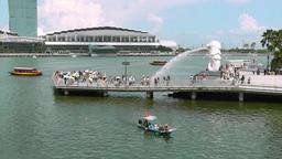 View of Merlion Park,Singapore Videos de Stock