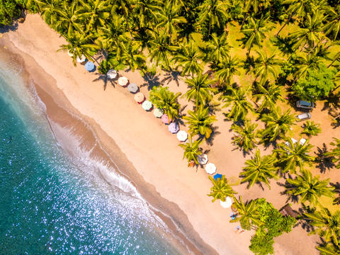 Tropical Beach and Many Palm Trees. Aerial View Fotografía
