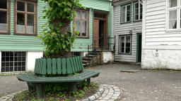 Norway Gamle Bergen old village square with wooden bench around a tree Footage
