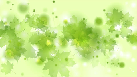 Light green shiny summer leaves abstract video animation CG動画素材
