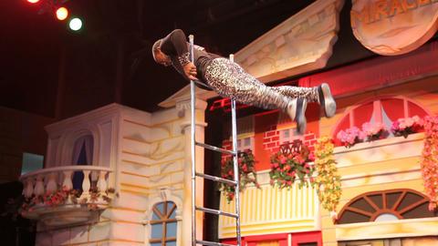 Acrobats & Circus 2