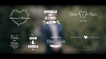 Fun Wedding Titles Premiere Pro Template