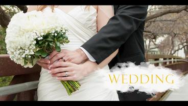 Wedding & Travel 0