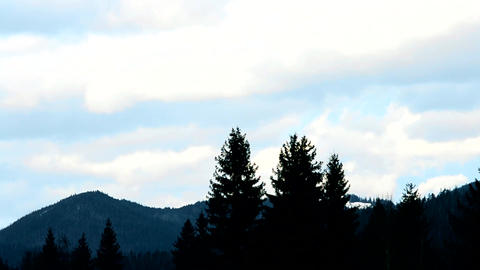 Clouds move above mountains with fir trees Footage