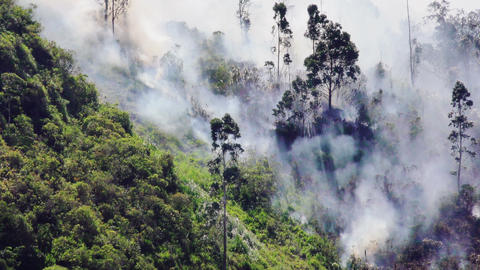 Wildfire On A Windy Day On A Mountain In Banos Ecuador Footage