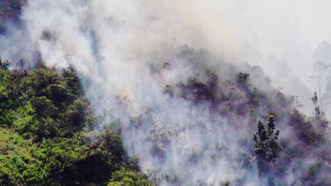 Firefighters Rescuing A Forest Fire In Banos Ecuador Footage
