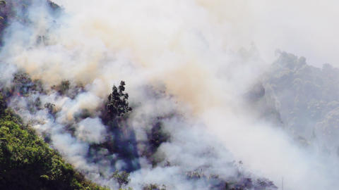 Forest Fire In Mountain Of Banos Footage