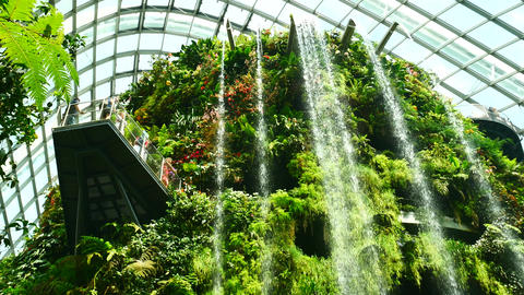 SINGAPORE MAR ,2018 : Waterfalls in the cloud Dome at Garden by the Bay ビデオ